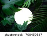 real leaves with white copy... | Shutterstock . vector #700450867