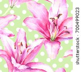 watercolor hand paint pink lily ... | Shutterstock . vector #700499023