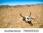 Cow Skull Into The Desert....