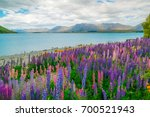 landscape at lake tekapo and... | Shutterstock . vector #700521943