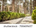 fin gardens park in kashan ...   Shutterstock . vector #700609657
