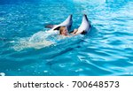 happy child and dolphins in... | Shutterstock . vector #700648573