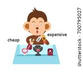 opposite cheap and expensive... | Shutterstock .eps vector #700795027