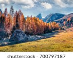 beautiful sunny view of... | Shutterstock . vector #700797187
