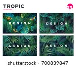 set of bright tropical... | Shutterstock .eps vector #700839847