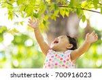 baby girl harvest red berry... | Shutterstock . vector #700916023