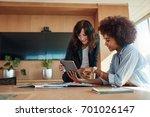 african businesswoman showing... | Shutterstock . vector #701026147