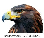 eagle triangles low poly art... | Shutterstock .eps vector #701334823