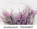 bunch of heather flower ... | Shutterstock . vector #701444857