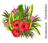 bouquet of hibiscus and exotic... | Shutterstock .eps vector #701446063