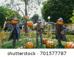 scarecrow and halloween pumpkin ... | Shutterstock . vector #701577787