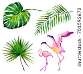 beautiful tropical palm leaves... | Shutterstock . vector #701592673