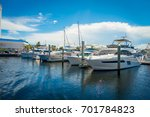 fort lauderdale  usa   july 11  ... | Shutterstock . vector #701784823