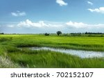 Small photo of Panorama of green rice field on sunny day in rainy season with blue sky and white clouds. Landscape of paddy field in Asian tropical country, agricultural farming in fertile area of alluvium soil.