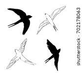 swallow silhouette  vector ... | Shutterstock .eps vector #702178063