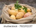 potato. fresh young potatoes... | Shutterstock . vector #702192157