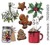 christmas decor  plants line... | Shutterstock .eps vector #702201823