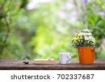 flowers in orange pot with... | Shutterstock . vector #702337687