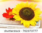 botanical background   garden... | Shutterstock . vector #702373777