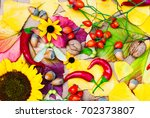 botanical background with... | Shutterstock . vector #702373807