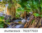 indian canyons hiking trails...   Shutterstock . vector #702377023