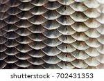 fish scales skin texture macro... | Shutterstock . vector #702431353