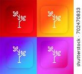 sprout four color gradient app...