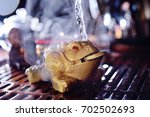 a three toothed tea toad with a ... | Shutterstock . vector #702502693