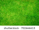 green grass natural background...   Shutterstock . vector #702666613