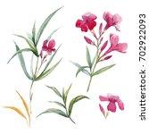watercolor set illustration of... | Shutterstock . vector #702922093