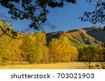 autumn view at cades cove of... | Shutterstock . vector #703021903