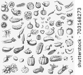 set of various hand drawn... | Shutterstock . vector #703168273