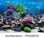 aquarium corals reef | Shutterstock . vector #70320076