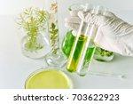 natural medicine development in ... | Shutterstock . vector #703622923