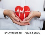 close up of a person holding... | Shutterstock . vector #703651507
