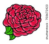 flower rose  red buds and green ... | Shutterstock .eps vector #703672423