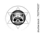 the head is adorable raccoon... | Shutterstock .eps vector #703794337