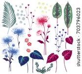 set of summer floral greeting... | Shutterstock .eps vector #703796023