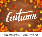 vector autumn leaves typography.... | Shutterstock .eps vector #703824673