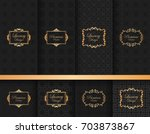 collection of ornate... | Shutterstock .eps vector #703873867