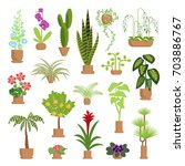 window gardening infographic... | Shutterstock .eps vector #703886767