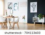 modern black and white bright... | Shutterstock . vector #704113603