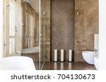 fancy bathroom with brown... | Shutterstock . vector #704130673