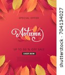 autumn sale background layout... | Shutterstock .eps vector #704134027