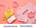 autumn arrives. fashion lady... | Shutterstock . vector #704149003