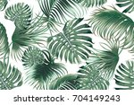 tropical palm leaves  jungle... | Shutterstock .eps vector #704149243