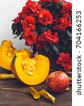 autumn still life with pumpkin  ...   Shutterstock . vector #704166253