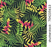 tropical background with palm... | Shutterstock .eps vector #704235613