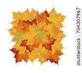 vector autumn fallen leaves....   Shutterstock .eps vector #704307967