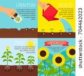 Planting Process Vector...